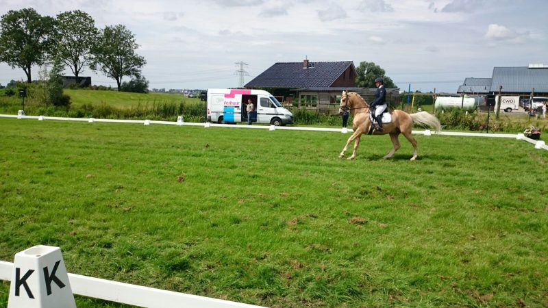 Concours hippique Leeuwarden